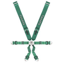 Takata Race 6 - 6 Point FIA Harness - Green